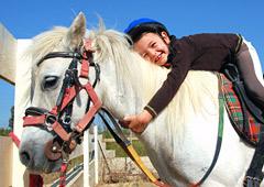 bafa cheval